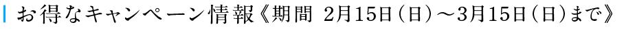 お得なキャンペーン情報《期間 2月10日(火)~3月10日(火)まで》